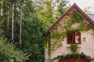Cottage image courtesy of Greg Rosenke on Unsplash.