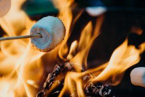 Roasting marshmallow image courtesy of Leon Contreras on Unsplash.