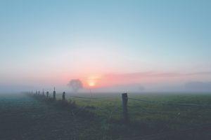 Image of a misty morning on farmland.