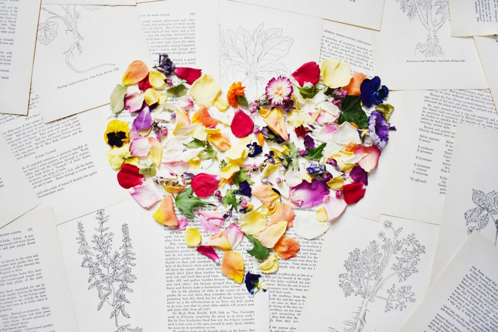 Outline of a heart made of flowers over botanical text pages. Courtesy of Riss Design on unsplash.com